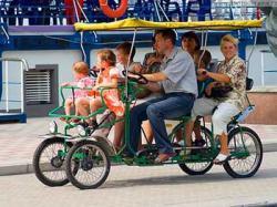 Депутаты решили: Велорикшам и животным въезд запрещен
