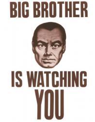 Большой брат в Бердянске следит за каждым!