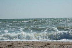 Азовскому морю грозит экологическая катастрофа