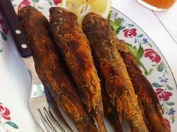 В Бердянске гостей потчевали бычками в шоколаде