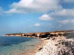 Часть Азовского побережья незаконно передали в частную собственность