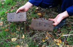 На трассе Бердянск - Мариуполь обнаружили две противопехотные мины