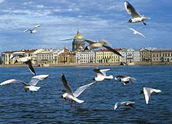 Санкт–Петербург